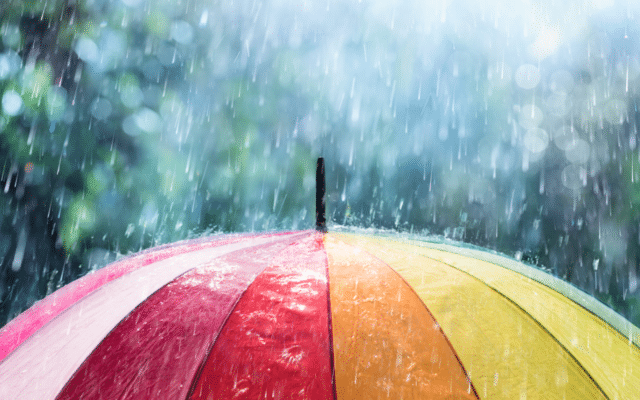 April Showers Bring…Allergies?